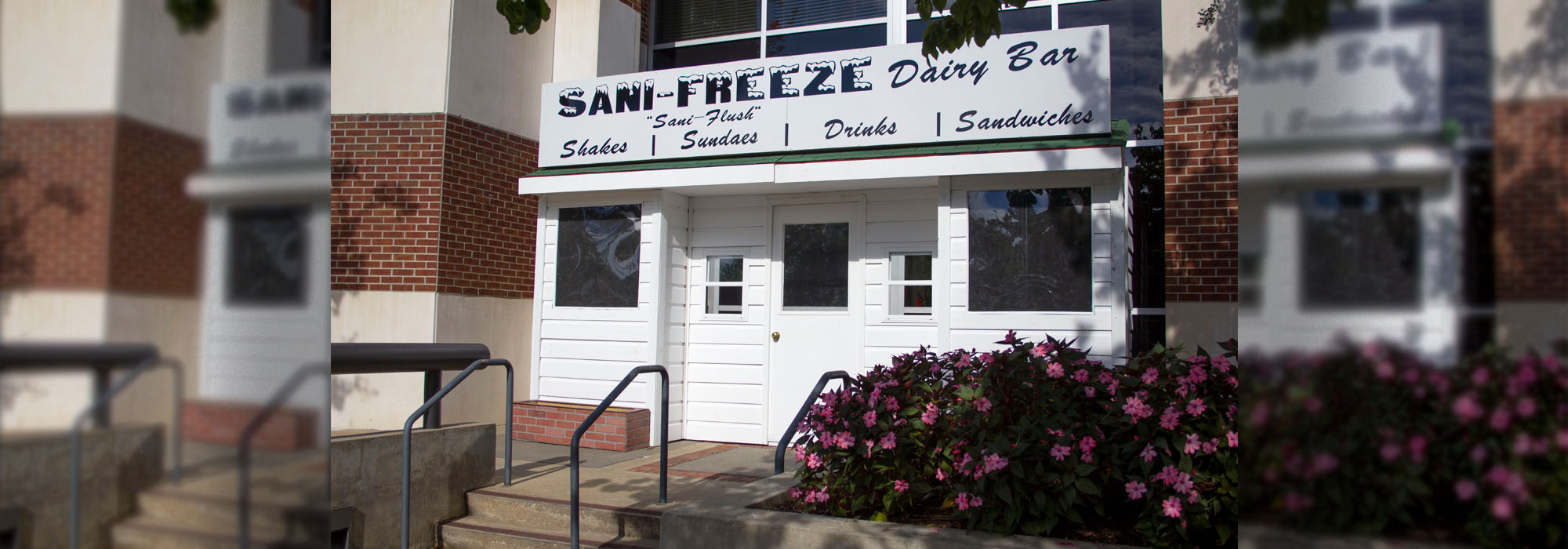 The Sani-Freeze Returns!