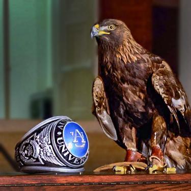 Auburn Ring and Eagle