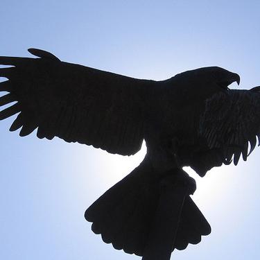 Eagle Statue silhouette
