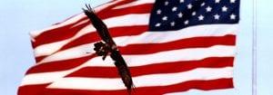 Veteran Alumni Banner - Eagle Flyover