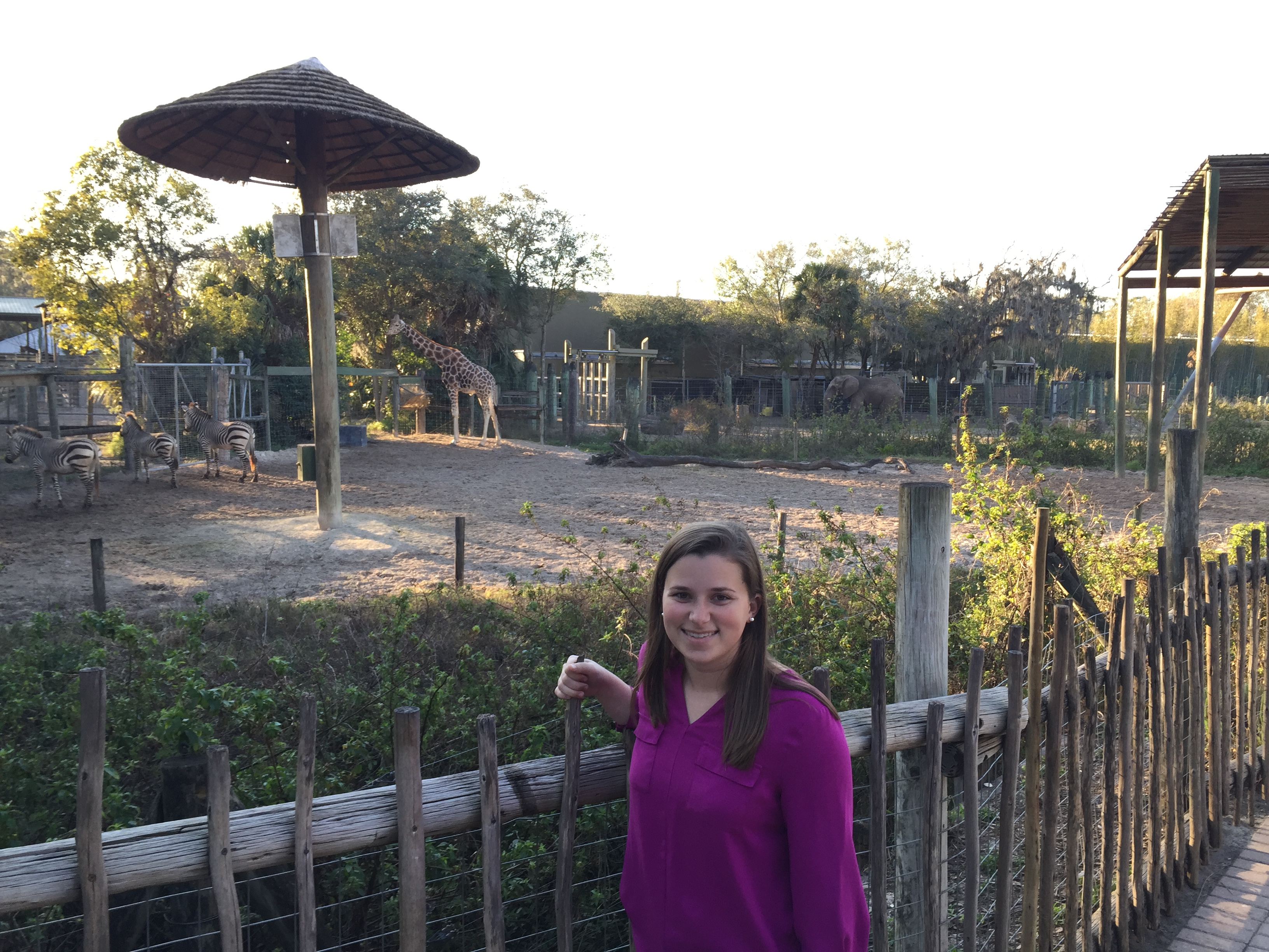 Nicole Morrison, Events Coordinator, at the Lowry Park Zoo