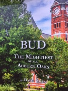 Bud, the mightiest of all auburn oaks cover