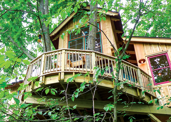 Treehouse in the trees