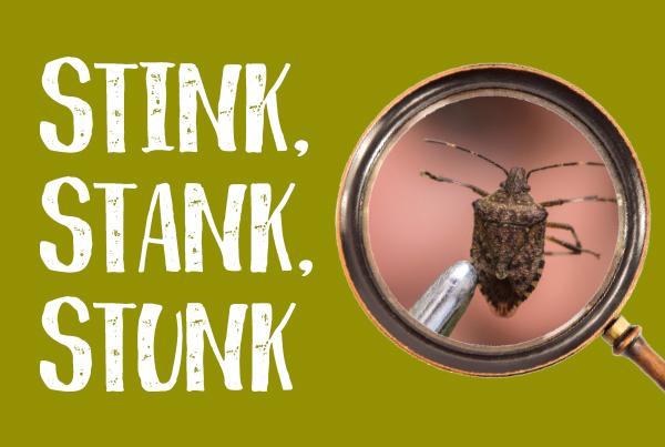 Stink, Stank, Stunk
