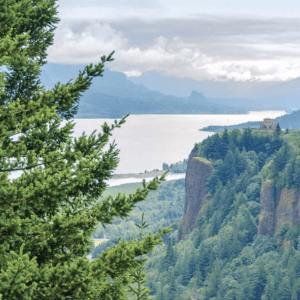 Wines of the Pacific Northwest