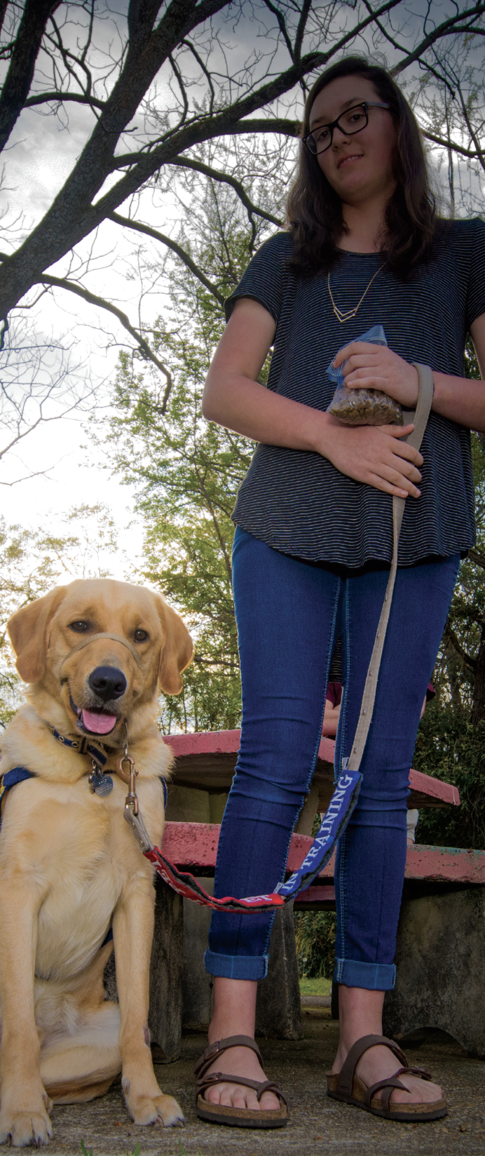 Jennifer Lyons and guide dogs