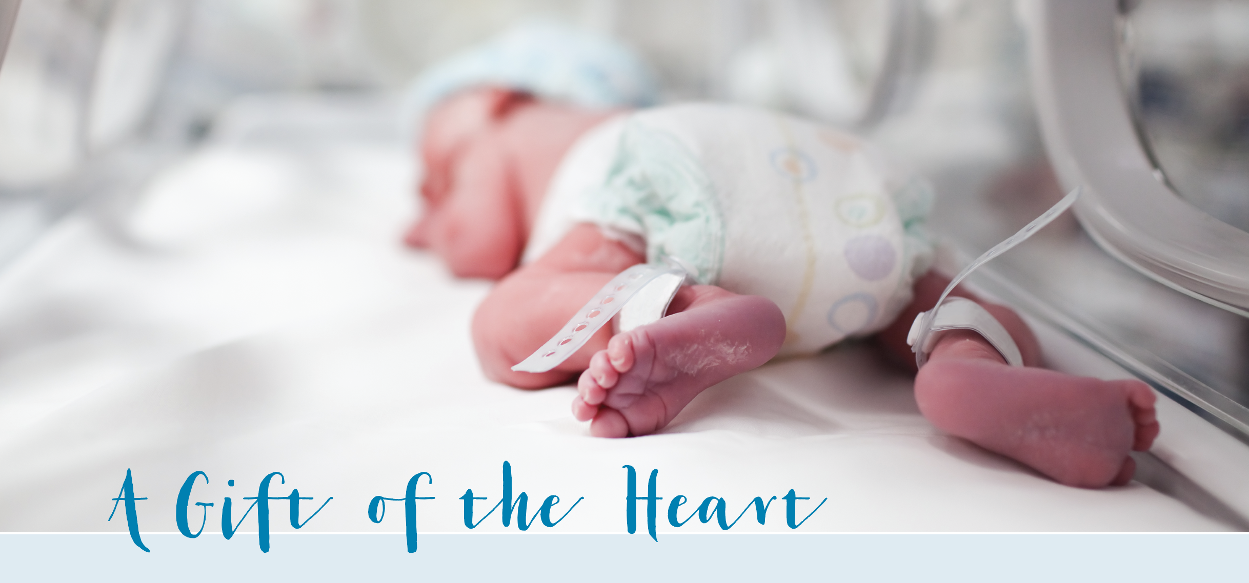 Gift of the Heart; photo of newborn baby