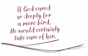 """""""If God cared so deeply for a mere bird, He would certainly take care of her."""""""