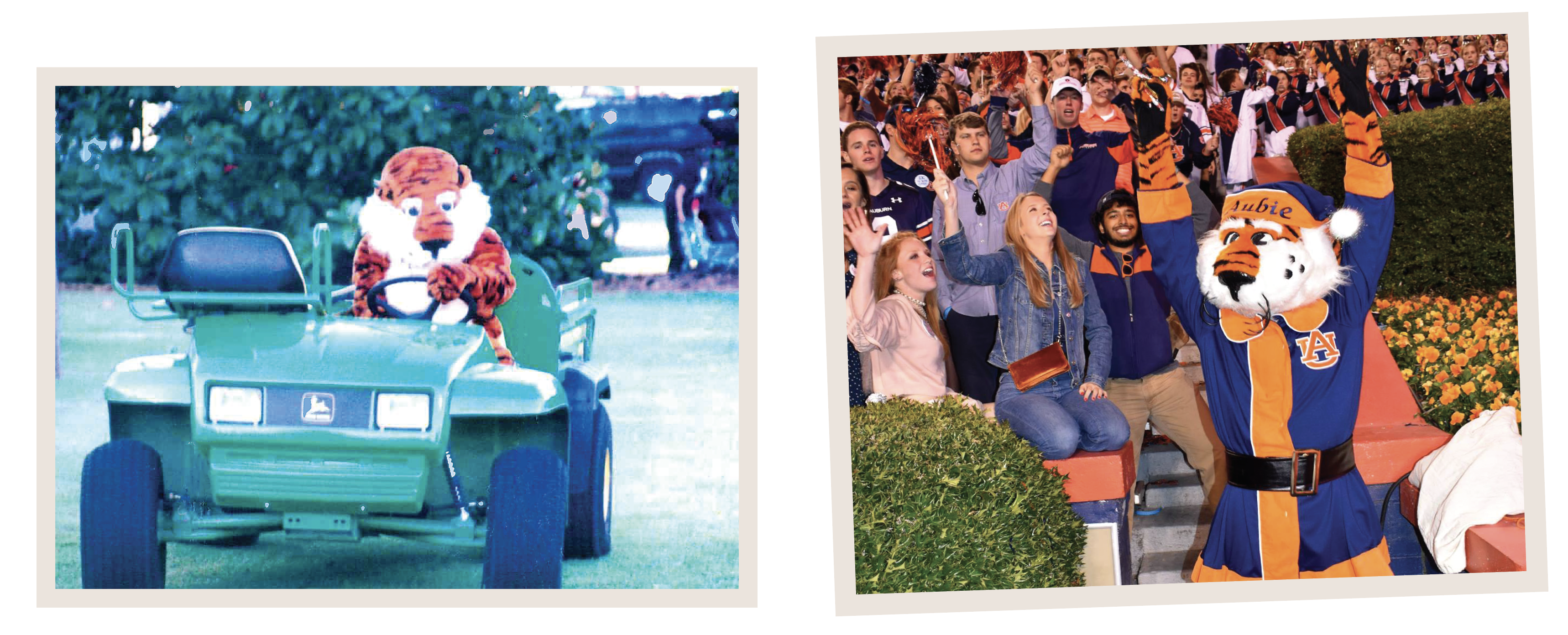 Aubie on the John Deere Gator and Aubie Claus in Jordan Hare