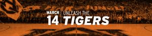 Basketball Nashville Page Header