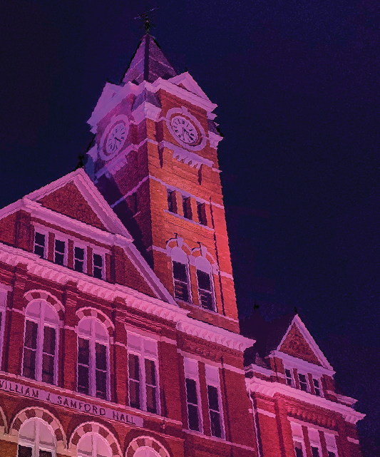 Samford lit up in purple for domestic awareness month