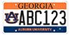 Georgia Car Tag