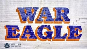 War Eagle Wall zoom background