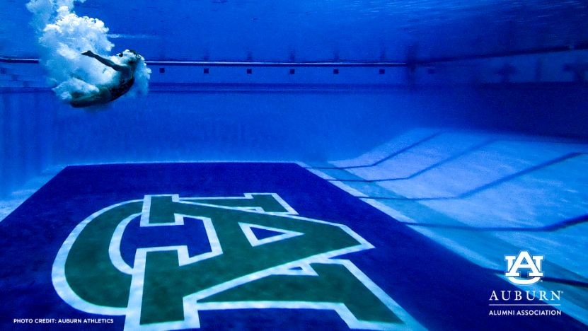 Zoombkg-Diving
