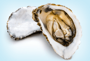 From Auburn Magazine: Improved Shell Life