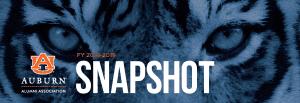 Snapshot metrics for last year 2018-2019
