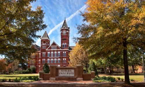 Alumni & Career Resources