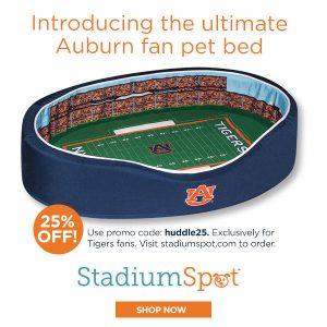 Stadium Spot Sponsor graphic